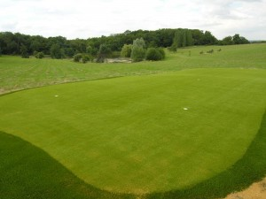 kunstgras_golf1.4
