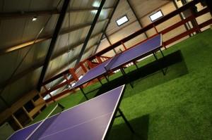 kunstgras_indoor1.1