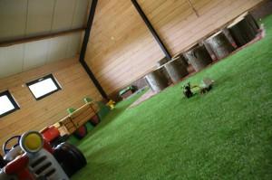 kunstgras_indoor1.6